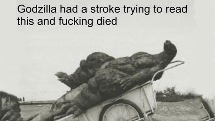 Godzilla had a stroke trying to read this and died