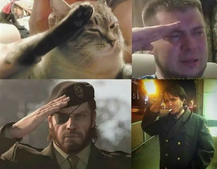 Cat and men salute military style meme - Respect!