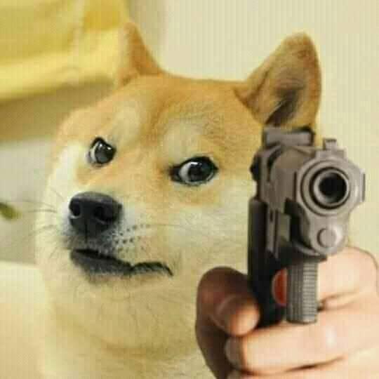 Doge pointing gun meme