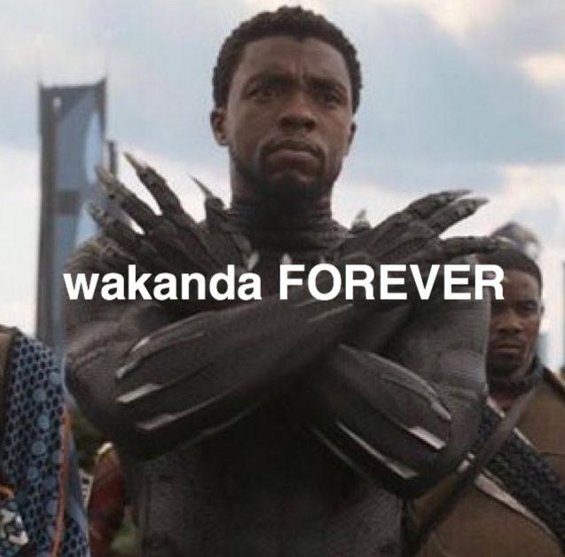 Wakanda Forever - R.I.P Chadwick Boseman
