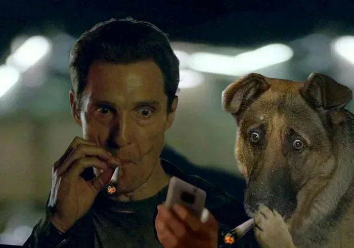 Man and dog smoking and looking at mobile phone meme