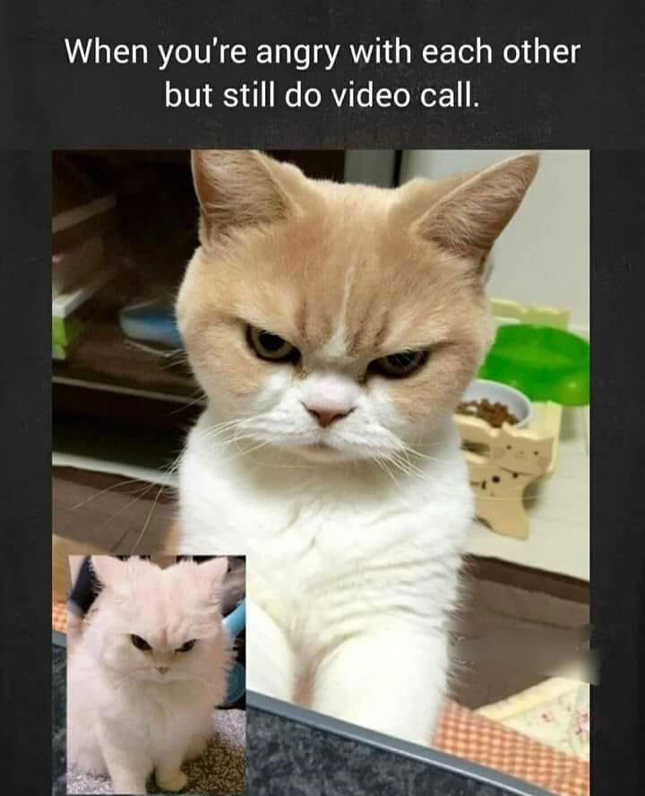 When you are angry with each other but still do video call