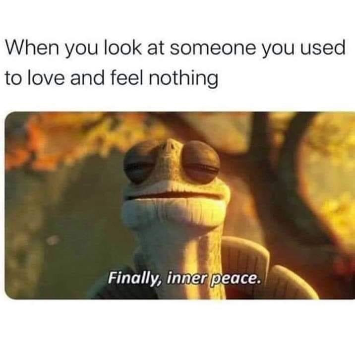 When you look at someone you used to love and feel nothing - Finally, inner peace.