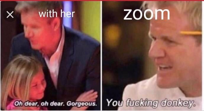 "Gordon Ramsay with her and on zoom: ""you fucking donkey"" meme"