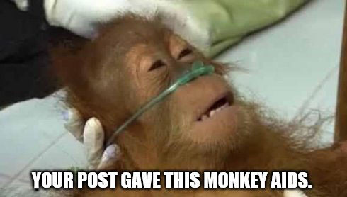 Your post gave this monkey AIDS meme