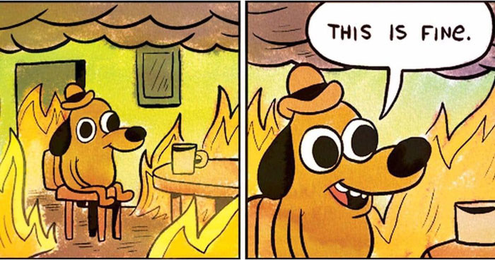 Dog in the middle of the fire meme: This is fine!