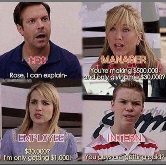 CEO, manager, employee and intern salary meme
