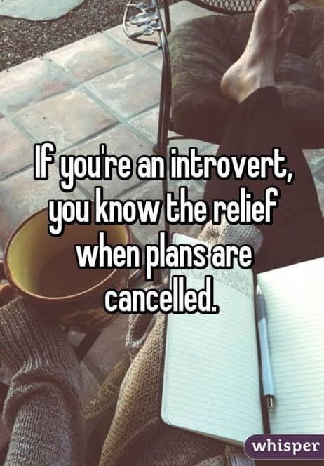 If you're an introvert, you know the relief when plans are cancelled