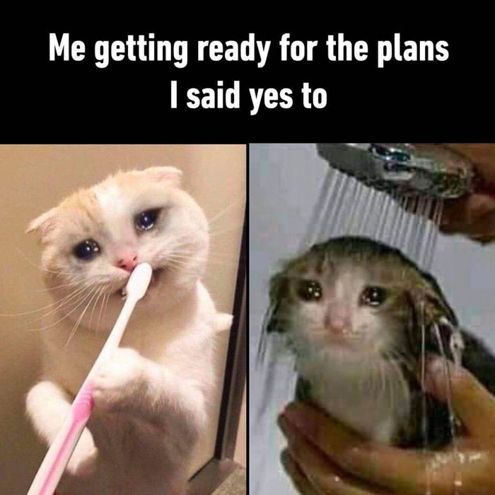Me getting ready for the plans I said yes to - crying cats meme