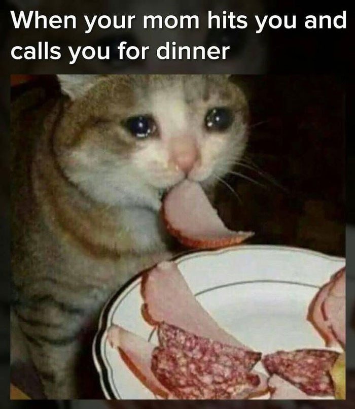 When your mom hits you and calls you for dinner - crying cat eating meme