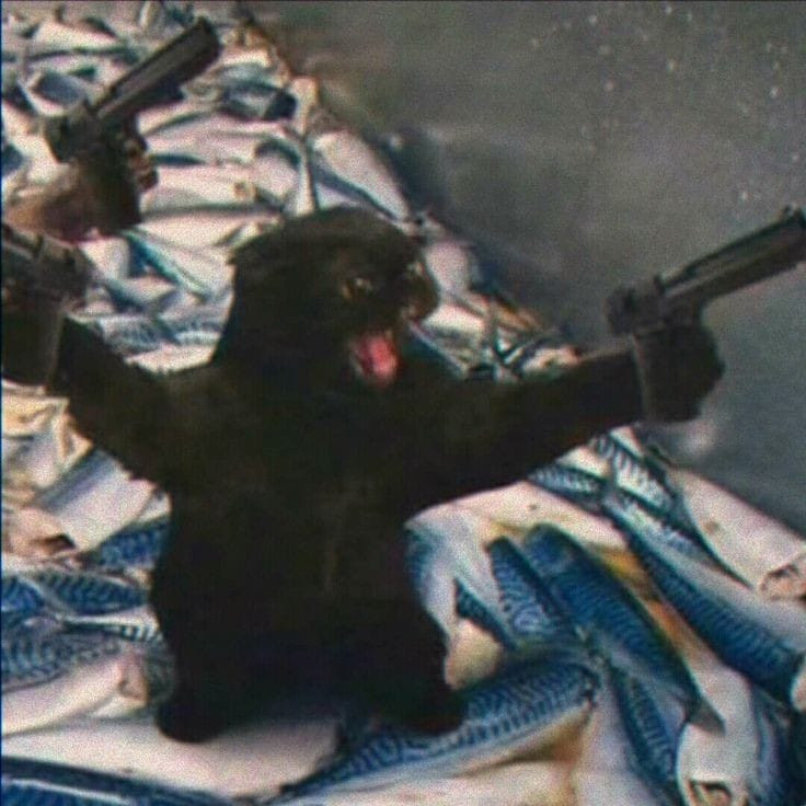 Black cat holding two guns and shouting meme