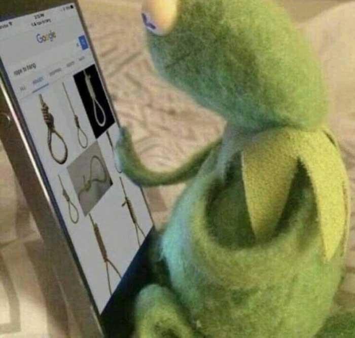 Stuffed green frog searching for hangman's knot meme