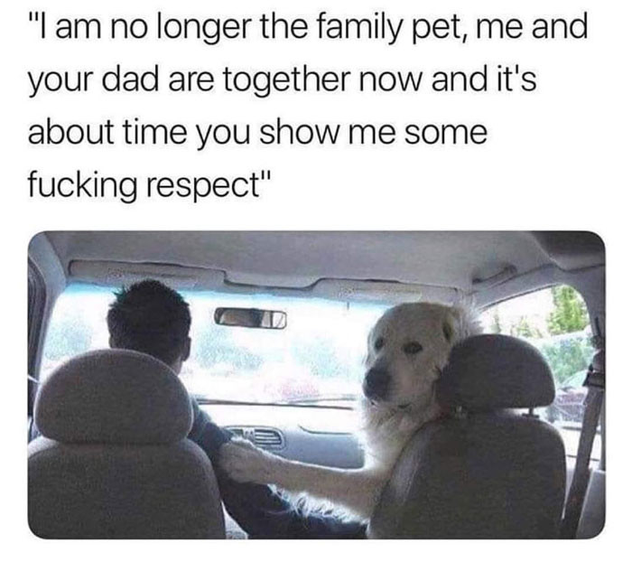 Dog: I am no longer the family pet. It's about time to show me some fucking respect.
