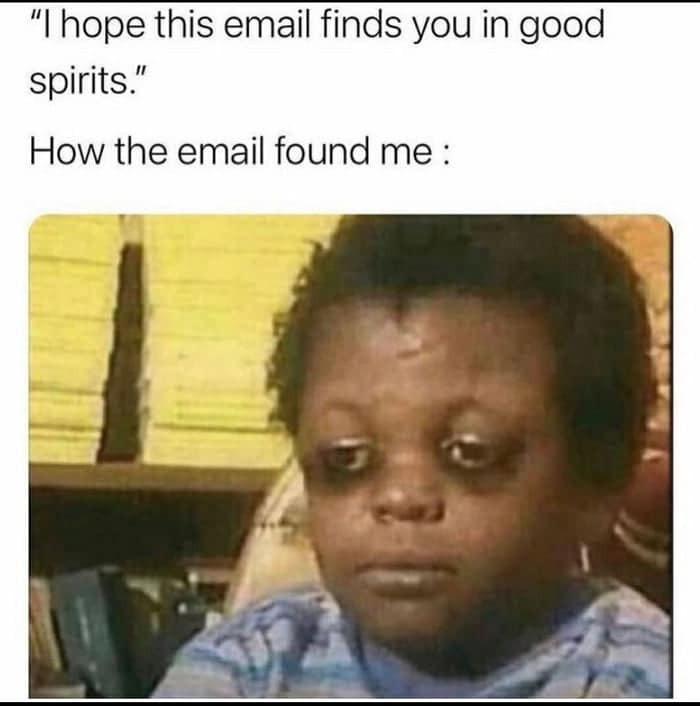 'I hope this email finds you in good spirits' and how the email found me meme